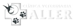 Aller Clinica Veterinaria